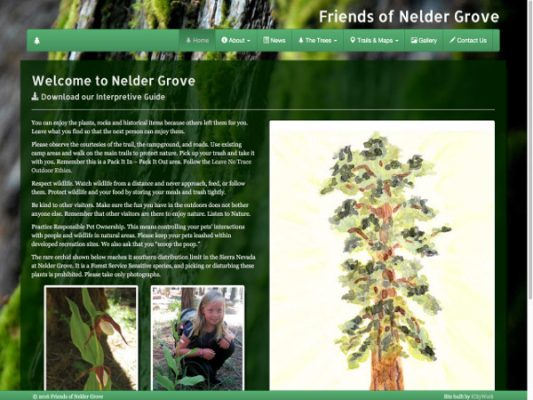 Friends of Nelder Grove Main Landing Page